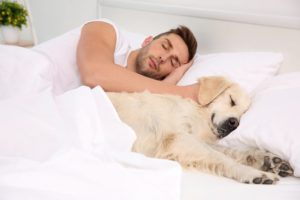 pets and sleep apnea in Topeka